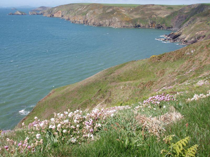 Pembrokeshire Newgale 001